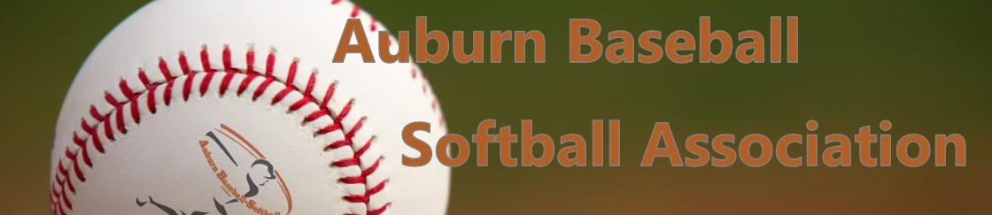 Baseball - City of Auburn