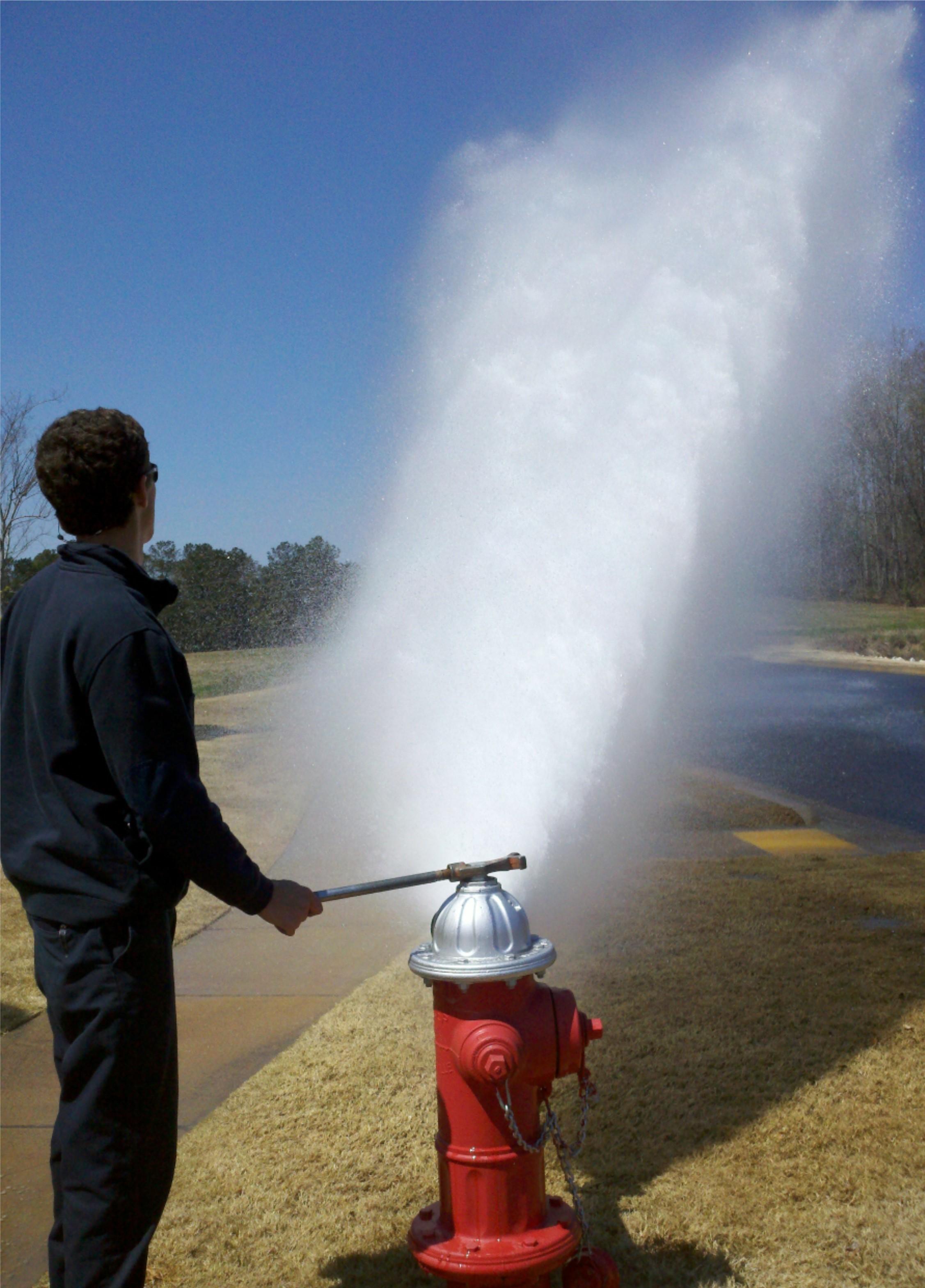 fire hydrant city of auburn
